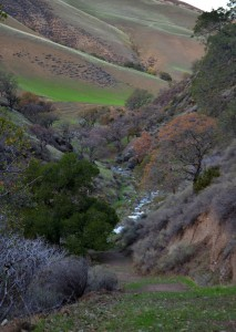Tesla Park - Corral Hollow Creek Wildlands