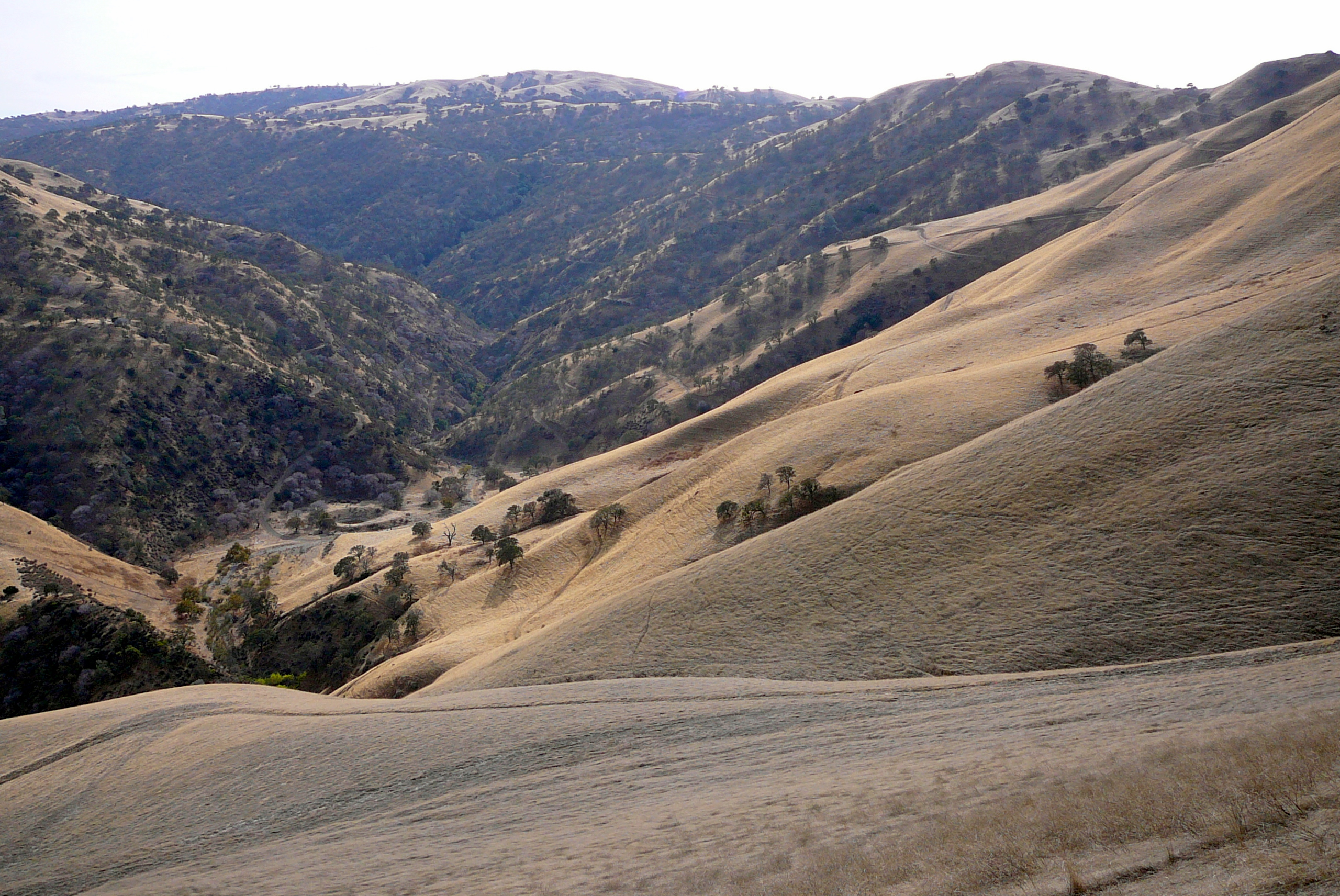 corral-hollow-creek-watershed